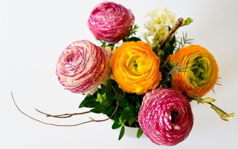 bouquet-of-flowers-on-white-background
